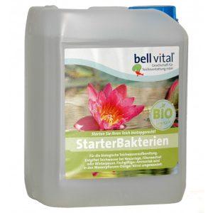 bell vital Starter-Bakterien
